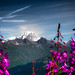 Mont Blanc depuis les Arcs 2000