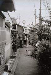 0720 (nori 4_4) Tags: kyoto  roji copywithiphonefromaprint  nikon