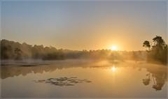 Goorven II (jos.pannekoek) Tags: zonsopkomst sunrise goorven oisterwijk ven mist goud d500 nikkor1755f28 landschap brabant landscape