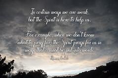 Romans 8-26 (dianabog ) Tags: bible scripture theword