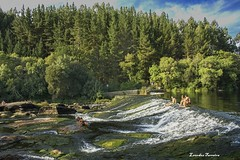 PIAGO LUGO. MIO. VERANO. (lourdestorreira) Tags: paisaje galicia ro mio lugo piago turismo verano gallego espaa fotografa paraje naturaleza