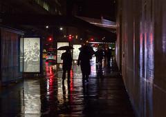Drizzle (kuburovic.natasa) Tags: rain random evening cold pleasure littlehappiness dark city poster outdoors away