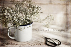 Tiny Flowers {with texture} (DefinitelyDreaming) Tags: flowers floral gypsophilia tinyflowers stilllife delicate pretty mug scissors indoors texture 2lilowls sonya99