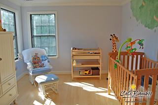 Marnie-Benjamin-Nursery-pic-2_5788592312_o