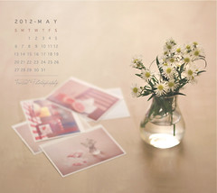 MAY Calendar (Faisal | Photography) Tags: pictures flowers flower glass colors canon table eos dof natural photos bokeh 14 images usm 50 ef ef50mmf14usm 50d canoneos50d maycalendar faisal|photography فيصلالعلي