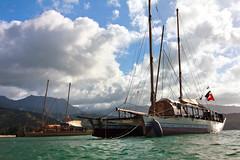 Voyaging Canoes, Hanalei (Emily Miller Kauai) Tags: hawaii bay north shore canoes kauai hanalei voyaging vaka