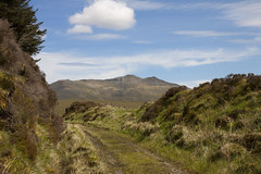 Looking towards Arenig from the old railway line (Martin Pritchard) Tags: walk railway line cwm bala trawsfynydd prysor