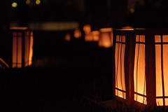 Luminaria Placed Throughout