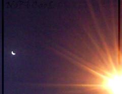 Crescent Before Sunrise (NoBi CooL) Tags: sun moon sunrise bluesky crescent