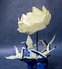 Four Cranes Circling A Lotus