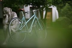 Pelago Capri (Biciclasica.com) Tags: vintage bicicleta paseo brooks finlandia pelago classicbikes clsicas brooksb17s schwalbedurano pelagocapri bicicletasclasicasfinlandesas pelagocycles shimanotektro cuadrodecromoly bielaslasco horquillaconracores