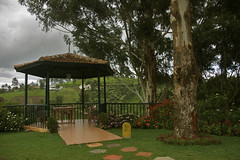 Kotagiri (Shillika) Tags: travel india nature ooty hillstation southindia westernghats kotagiri