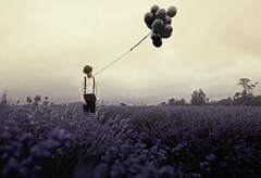 Evanescent (Subversive Photography) Tags: flowers trees sun man field dark balloons mood foreboding lavender atmosphere rope bowlerhat conceptual cinematic gentleman noose fadeaway danielbarter