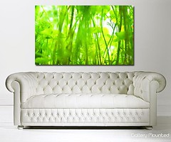 JUST GREEN (Canvas Art Shop) Tags: flowers art floral wallart posters prints homedecor flowerart floralprints canvasart canvasprints flowerprints flowerwallart flowercanvasprints flowercanvasart