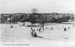 Montreal Annex from Mount Royal, Montreal, QC, about 1910 (Muse McCord Museum) Tags: montreal