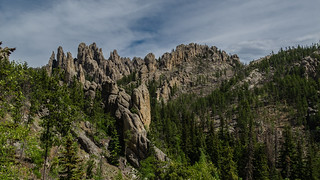 Along Needles Highway, SD