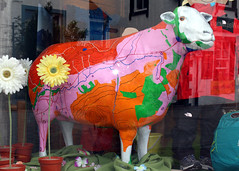 Fell Top Georgy the 59th (Cumberland Patriot) Tags: go herdwick goherdwick painted sheep ewe cumbria cumbrian calvert trust fell top georgy the 59th george fisher store keswick indoor
