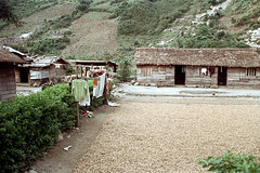 33-54 (ndpa / s. lundeen, archivist) Tags: nick dewolf nickdewolf color photographbynickdewolf 1970s 1972 fall film 35mm winter republicofchina taiwan taiwanese china chinese 1973 easterntaiwan yilancounty rural rurallife village building house home clothes clothesline grain dryinggrain harvest thatchroof thatchedroof yilan ilan eastcoast 33 reel33