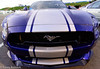 D71_5282.jpg (Tobey. Captured.) Tags: mustang new drag race fast fun night blue purble purple horse