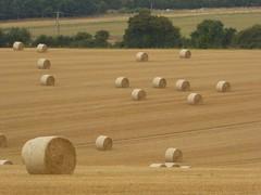Round bales (JuliaC2006) Tags: kent hay bales field
