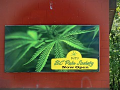 Pain Society (knightbefore_99) Tags: pain society eastvan vancouver pot green marijuana legal dispensary grass medical bc canada cool leaf bud
