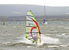 Aug20100a (Mike Millard) Tags: hamworthypark pooleharbour windsurfers