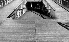 From the bottom of the bridge (pascalcolin1) Tags: paris13 passerelle footbridge dessous bridge pont homme man ombre shadow lumire light photoderue streetview urbanarte noiretblanc blackandwhite photopascalcolin soleil sun