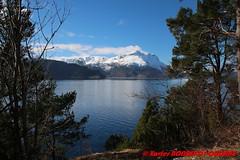 Nordfjord - Lote (soyouz) Tags: geo:lat=6186009500 geo:lon=610017300 geotagged henne lote nor norvge sognogfjordane neige montagne fjord nordfjord norvegela