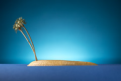 Island (William John Cooper) Tags: studio studiolighting lighting flash tabletop tabletopphotography still stilllife art fineart food paper landscape miniature model palm palmtree palmtrees tree trees sand banana tropical sunny scale small