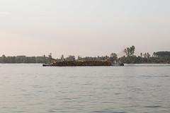 NKRS2846 (pristan25maj) Tags: green pristan pristan25maj brodovi boats reka river dunav danube photonemanjaknezevic nkrs