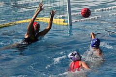 AW3Z8406_R.Varadi_R.Varadi (Robi33) Tags: action swimming ball basel fight women swimmingpool summer sports sportspool water waterpolo watersports championship