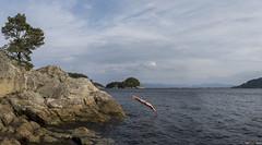 September dive... (bent inge) Tags: norway hordaland tysnes reksteren bruntveit diving swimming norwegianfjords september 2016 bentingeask