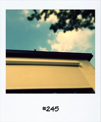 """#DailyPolaroid of 30-5-12 #245 • <a style=""""font-size:0.8em;"""" href=""""http://www.flickr.com/photos/47939785@N05/7156526153/"""" target=""""_blank"""">View on Flickr</a>"""