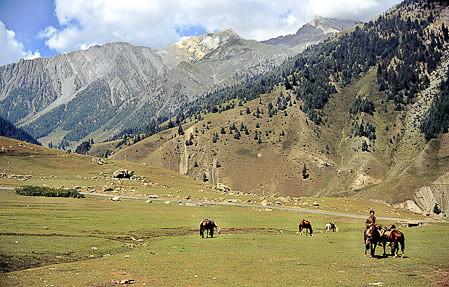 Kashmir 1988--03