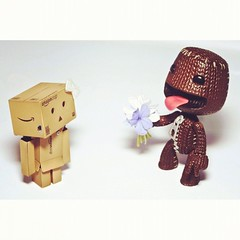 Love is in the air!  (Andreina _) Tags: love square toys 50mm nikon happiness cardboard figurines vinyltoys toyphotography revoltech nikond90 danboard flowerssackboy