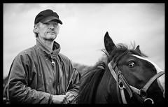 Eye contact (Frank Fullard) Tags: street ireland portrait bw horse irish eye heritage history mono eyecontact clare candid fair ennis spancilhill fullard frankfullard spancelhill
