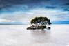 Tenby Point 2 (Kash Khastoui) Tags: longexposure sunset sky cloud seascape tree green clouds canon point landscape view south australia victoria vic tenby shutterspeed melbourn khashayar corinella khastoui