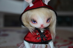 Phoebe (Girly Toys) Tags: phoebe luts zuzu delf chaperon rouge little red riding hood limited toya white skin collection bjd doll rabbit bunny lapin fullset missliliedolly miss lilie dolly aurelmistinguette girly toys collectible girlytoys