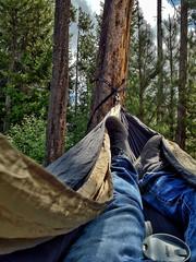 (everkamp) Tags: mountains oregon hammock cascades alpinelake campsite iphone deschutesnationalforest littlecultuslake cascadelakesscenicbyway iphoneography