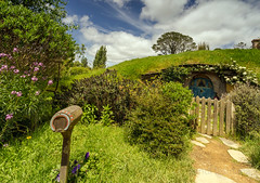 New Zealand (sandilesmana28) Tags: green tree new zealand hobit town grass blue flower mail box