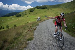 Just Another Day on the Col du Pailheres (orbital-vancouver) Tags: nookrestaurant tavolarestaurant bicycles roadbikes cycling france mountains vacation lemonastereadventures sprocketrocket roadslikethese titanium chrisrising2016 pyrenees cows