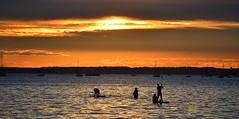 Evening Paddle (Tilney Gardner) Tags: sunset sandbanks silhouette dorset poole nikon seascape