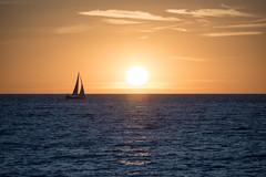 ...dem Sonnenuntergang entgegen segeln... (swissgoldeneagle) Tags: d750 sunset sonne sonnenuntergang segeln sweden balticsea afterglow dusk sun ostsee schweden sailing abendrot sailboat skandinavien segelboot sverige gotland scandinavia visby gotlandslän se