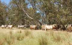 Kelvin Grove, Burrandana Road, Wagga Wagga NSW