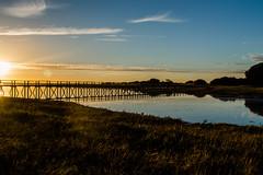 74 Aberlady nature reserve (NSJW photos) Tags: aberlady bridge walkway hightide scotland nsjwphotos