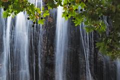 Sıhhiye Park, Ankara (Explored 19.09.2016) (RKAMARI) Tags: glowing leaves light park sycamoremaple tree waterfall
