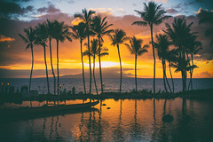And We Fell (Thomas Hawk) Tags: grandwailea hawaii maui wailea waldorfastoria waldorfastoriagrandwailea beach clouds humuhumu humuhumunukunukuapuaa palmtree restaurant sunset tree fav10 fav25 fav50