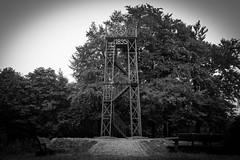 # (mai.qu) Tags: ostwestfalen wald teutoburg teutoburger wood forest germany oerlinghausen bielefeld eiserner anton lmmershagen hermansweg