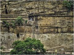 Entrance to the Debre Damo monastery. (Luc V. de Zeeuw) Tags: climb climbing entrance ethiopia man monastery mountain tree easttigray tigray