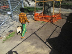 Walking The Dog (Robert Saucier) Tags: shadow usa dog chien man green fence harlem manhattan vert ombre parc homme tatsunis cloture marcusgarveypark img6115
